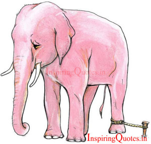 elephant stories in hindi language