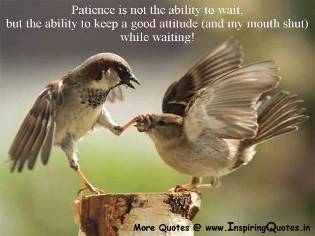 Patience Quotes, Famous Quotations about Patience, Best Quotes Images Wallpapers Pictures